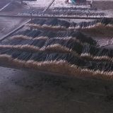 El mejor precio de poliacrilamida cañas de bambú para incienso