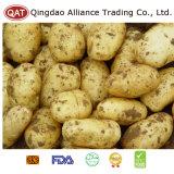 Hochwertige gefrorene gewürfelte Kartoffel