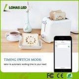 무선 WiFi 원격 제어 전원 소켓 지능적인 LED 가벼운 플러그