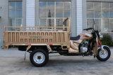 جديدة تصميم [150كّ] شحن درّاجة ثلاثية مع [ك]