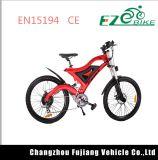 2018年の山のアルミニウム電気自転車500W Eのバイク