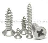 Fabricant OEM de haute qualité vis autotaraudeuse en acier inoxydable 304