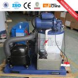 Bloco de gelo que faz o preço da máquina com bomba de água/compressor