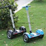 1000Wの10inch電気スクーター