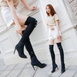 Comercio al por mayor jeans de moda mujer nuevo botas de rodilla