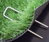 Qualité de vente chaude enduisant l'U-Type vert Nails/SOD Stalpe/clous d'herbe
