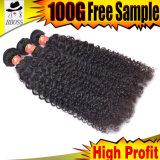 Cheveu brésilien de Remy de Vierge de mode (KBL-BH)