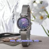 El reloj de la promoción modifica los relojes del cuarzo para requisitos particulares (WY-017C)
