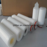 Cartuccia di filtro pieghettata membrana fibra di Microglass/polipropilene/N66