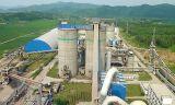 Mini riga macchina di produzione vegetale del cemento del rifornimento 150-500tpd