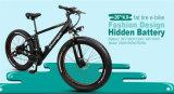 Nueva bici gorda eléctrica ocultada de la batería del diseño 250W fábrica