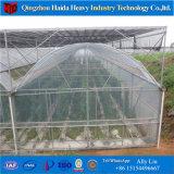 야채를 위한 온실에 있는 수경법 시스템