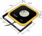 Niedriger Preis 2-Year-Warranty IP66 Epistar PFEILER 50W LED Flut-Licht