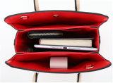 Borse di cuoio dell'unità di elaborazione della signora Fashion Handbags Women Designer della fabbrica di Guangzhou