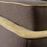 Sofa de tissu de modèle moderne de meubles de salle de séjour (FB1148)