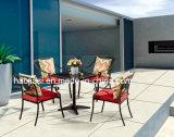 Alumínio ao ar livre/do jardim/Patio/Rattan/& tabela HS7126dt de Polywood