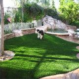 حامل شهادة عشب دوليّ لأنّ حديقة