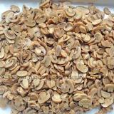 Поощрения хорошей цене наиболее востребованных консервированных грибов консервированных продуктов