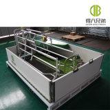 Jaulas de parto modificadas para requisitos particulares calientes del diseño del equipo de cultivo del cerdo de la venta para la venta