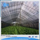 Rete verde dello schermo di Sun usata serra agricola calda di vendita