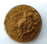 Usine de haute qualité d'alimentation Magnolia extrait de l'écorce en poudre Honokiol 98 %