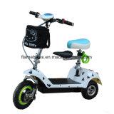 3つの車輪が付いている500W電動機のスクーター