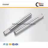 China-Hersteller-Edelstahl-Exzenterachse für elektrische Geräte