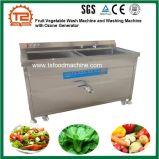 오존 발전기를 가진 과일 야채 세척 기계 그리고 세탁기