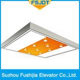 Fushijia Ausgangsaufzug mit Spiegel-Edelstahl und Scheinwerfer-Dekoration