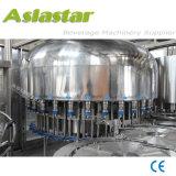 Het Water die van de goede Kwaliteit de Automatische Machine van het Water van de Fles van het Huisdier Zuivere bottelen