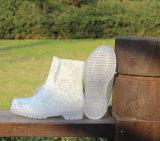 Schoenen van de Regen van de Vrouwen van de mode de Transparante, de Transparante Schoenen van de Nieuwe Dames van de Manier, de Populaire Schoen van de Regen van pvc van de Stijl Transparante