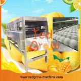 Dar vuelta a la máquina de proceso dominante del mango de la solución