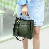 Bw1-004熱い販売法新しいデザインハンドバッグの女性袋