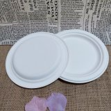 Biodegradable Bagasse Dinnerware Wedding Disposable Party To charge Punt