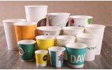 Tafelgeschirr-Kaffee-Tee-Wasser-trinkendes Papiercup-Wegwerfcup