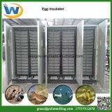 Fábrica que vende la incubadora automática del huevo de ganso de las codornices del pato del pollo de las aves de corral