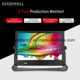 "Wellenform, vektorbereich 17.3 "" 3G-SDI LCD Monitor"