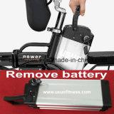 O transporte de bicicletas eléctricas barata de bicicletas eléctricas do veículo eléctrico com bateria