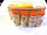 Ceftriaxona Sodium-Ocp injecção para a infecção do trato respiratório, infecção urinária
