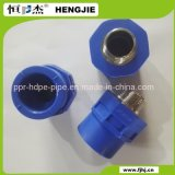 Soquete da linha masculina de Hengjie PPR da alta qualidade