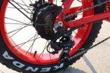 脂肪質のタイヤ500W Eのバイクを折る20inch