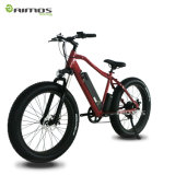 Verstecktes Batterie SANYO-Batterie-elektrisches Fahrrad/Schnee-elektrisches Fahrrad