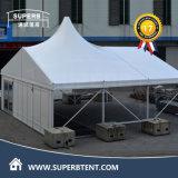 [مولتي-سد] [هي بك] عرس خيمة