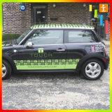 Sticker van de Auto van de douane de Vinyl voor Reclame (tj-14)
