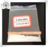 137-58-6 pharmazeutische Grad99% Lidocaine-Unterseite für Schmerz-Mörder