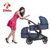 Baby-Spaziergänger mit Rahmen und zwei in einem und Carseat