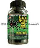 캡슐 규정식 환약을 체중을 줄여 체중 감소 검정 거미