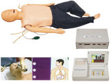教訓的な装置の医学の広範囲の救急処置CPRのトレーニングの人体摸型