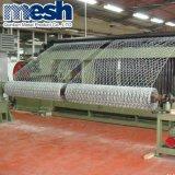 Edelstahl und galvanisierter sechseckiger Maschendraht mit Fabrik-Preis