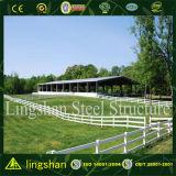 Arena dell'interno d'acciaio di guida della costruzione d'acciaio per le attività